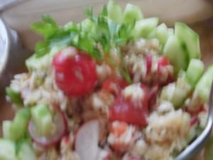 surówka kap.pekińska, rzodkiewka, pomidor, ogórek