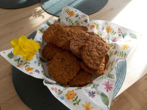 ciasteczka owsiane z zurawina (2)